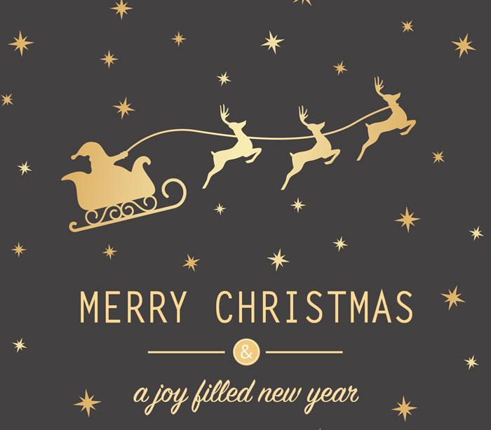 christmas-2015-cyonpark-webstore.jpg